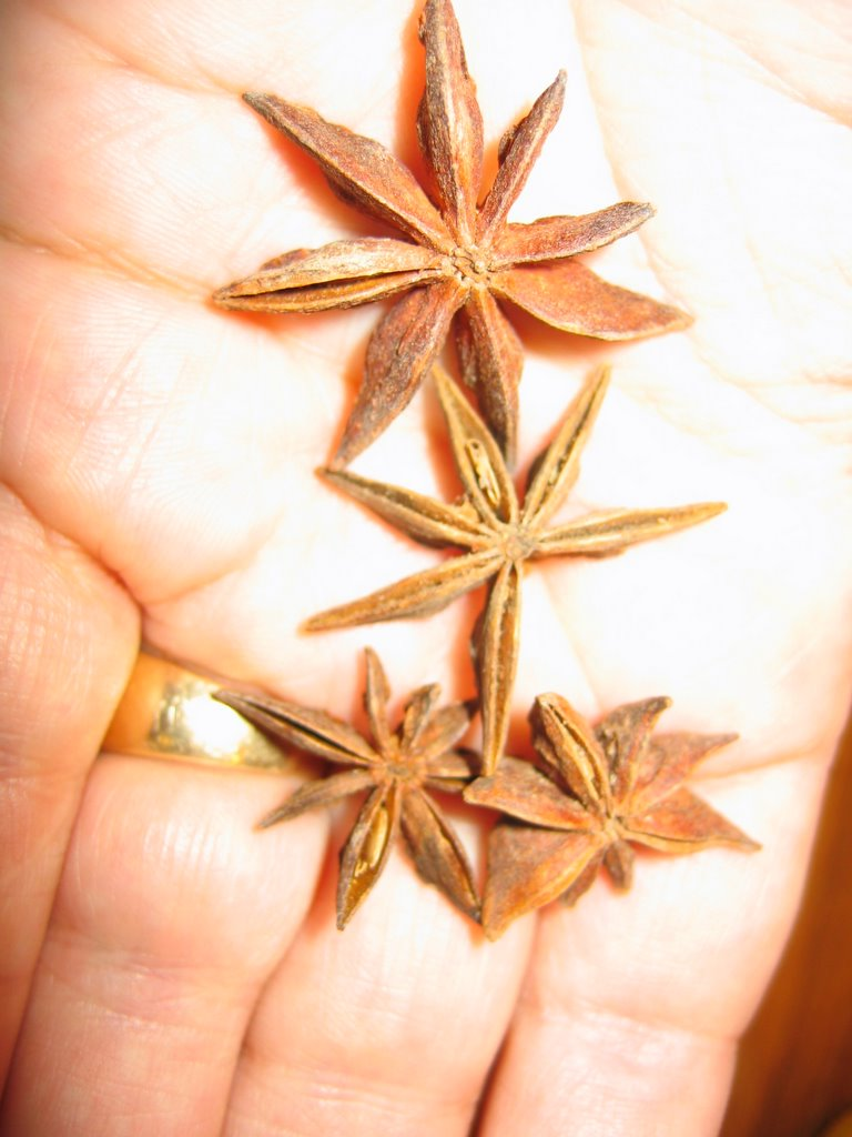 Cookie recipes using star anise
