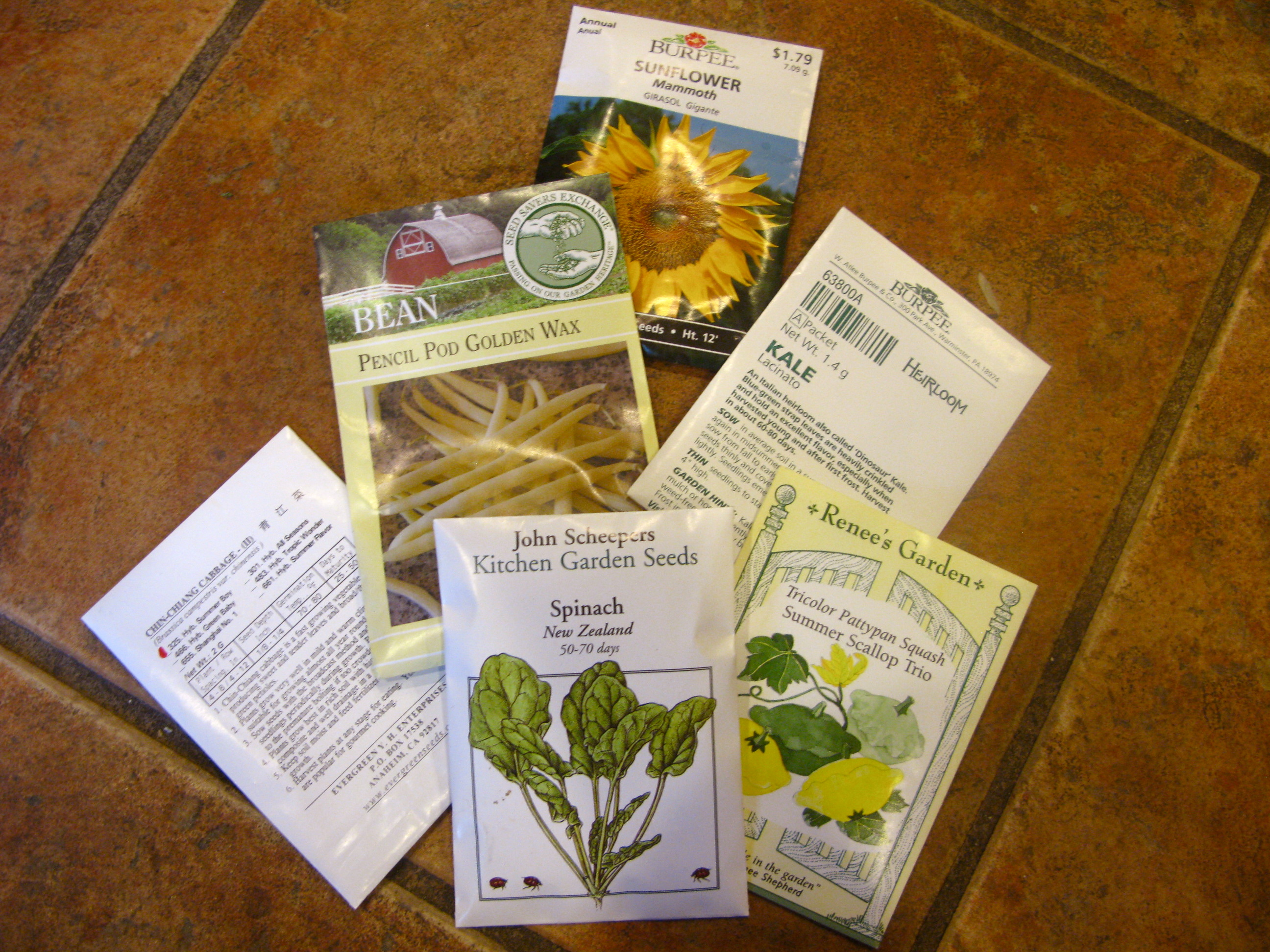 Scheepers Kitchen Garden Seeds Tigers Strawberries A How To Read A Seed Packet